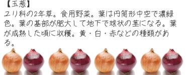 ch_mame10