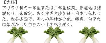 ch_mame12